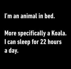 I'm an animal in bed. More specifically a koala. I can sleep for 22 hours a day.