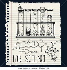 Similar Images, Stock Photos & Vectors of Hand drawn science beautiful laboratory icons sketch.Back to School. Science Drawing, Science Art, Science Museum, Page Borders Design, Border Design, Science Tumblr, Notebook Labels, Chemistry Art, Science Tattoos
