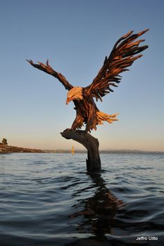 Driftwood Eagle - Knock on Wood, the Creative Works of Jeff Uitto