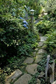 25 Stunning Garden Paths. -- I want a raised bed (without walls), then a pathway, then a low border all the way around the yard.