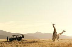 botswana paisajes - Buscar con Google
