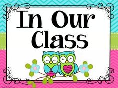 Classroom Rules Display in Owls and Chevron Classroom Deco