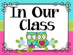 Classroom Rules Display {Owls and Chevron Classroom Decor Theme}
