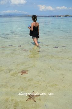 15 Things to do around Komodo National Park @ Indonesia - Always Travelicious ! Komodo National Park, National Parks, Komodo Island, Komodo Dragon, Snorkelling, The Province, The Locals, Tuscany, Wilderness