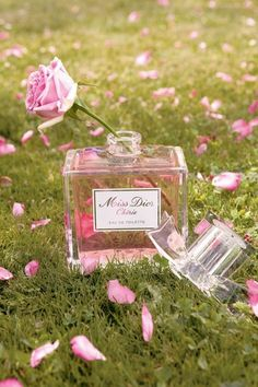 love the idea of perfume bottles as vases (РІвўТђ Miss since Di - Dior Eyeglasses - Trending Dior Eyeglasses. - love the idea of perfume bottles as vases (РІвўТђ Miss since Dior Eyeglasses Trending Dior Eyeglasses. Perfume Dior, Perfume 212, Perfume Bottles, Dior Fragrance, Miss Dior, Christian Dior, Parfum Rose, Dior Eyeglasses, Everything Pink