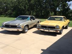 Two 1973 Chevelle SS's. One is silver metallic with 454 and the other is chamois with a 1973 Chevelle, Chevrolet Chevelle, Pontiac Gto, Grand National Gnx, Gm Car, Chevy Muscle Cars, Pontiac Grand Prix, Chevrolet Malibu, Dream Cars