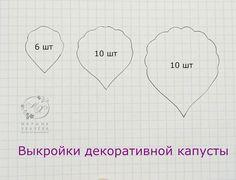 выкройки декоративной капусты.jpg — Яндекс.Диск