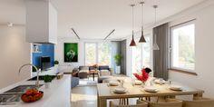 Kitchen and salon interior  / Wizualizacja salonu i kuchni.