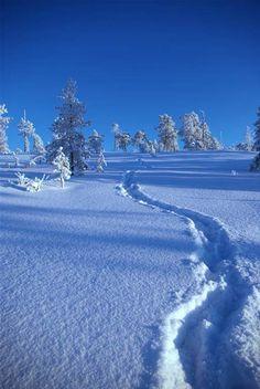 sneeuw. spoor