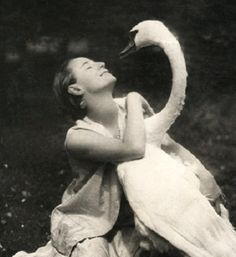 Image result for anna pavlova and swan