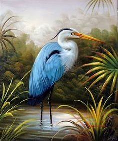 Blue Heron Egret Everglades Swamp Wetlands 20 – Wholesale Great ...