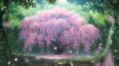 Ket Qua Hinh Anh Cho Anime Cherry Blossom Japanese TreeDesktop BackgroundsWallpapersCherry