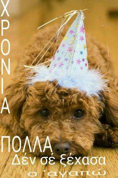 Χρόνια πολλά Birthday Celebration, Birthday Wishes, Happy Birthday, Name Day, Greek Quotes, Jokes, Teddy Bear, Whiskey, Cards