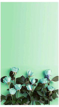 Wallpaper Iphone Pastell, Mint Green Wallpaper Iphone, Pastel Iphone Wallpaper, Flower Phone Wallpaper, Green Nature Wallpaper, Mint Green Aesthetic, Flower Aesthetic, Aesthetic Beauty, Aesthetic Collage