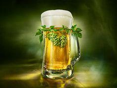 Okocim Beer on Behance