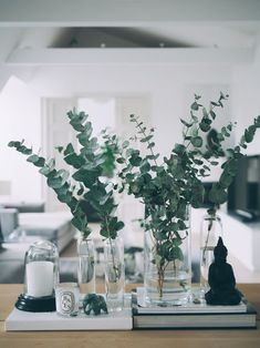 All green everything - eucalyptus branches | Camilla Pihl