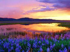 Idaho... how beautiful...