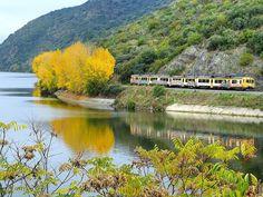 Train at Douro riverside (Linha do douro), Portugal