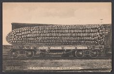 George B. Cornish - A Car Load of Texas Corn