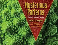 Children's Book Committee October 2014 Pick: MYSTERIOUS PATTERNS: FINDING FRACTALS IN NATURE by Sarah C. Campbell, photographed by Sarah C. Campbell and Richard P. Campbell (Boyds Mills Press/Highlights, 2014)