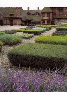 Google Image Result for http://www.thegardenerseden.com/wp-content/uploads/2010/07/The-Art-of-French-Vegetable-Gardening.jpg