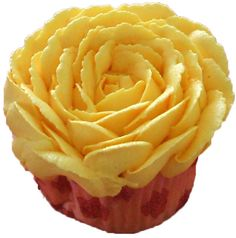 vanilla cupcake decorated with yellow buttercream rose - cupcakes York PA.