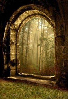 Ancient doorway in the woods.