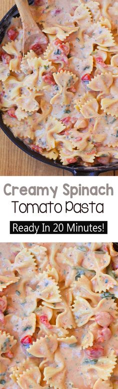 Creamy Spinach Tomato Pasta - A rich and ultra creamy pasta recipe, without all the unhealthy fat and calories - This delicious one-pot meal is a weeknight staple - We never have any leftovers! Creamy Tomato Pasta, Creamy Pasta Recipes, Creamy Spinach, Spinach Recipes, Vegan Creamy Pasta, Low Fat Pasta Recipes, Meatless Pasta Recipes, Chicken Recipes, Beef Recipes