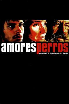 """Amores Perros [Amours chiennes] - Alejandro González Iñárritu 2000 -- """"Trois vies se trouvent inextricablement liées à la suite d'un terrible accident d'auto."""""""