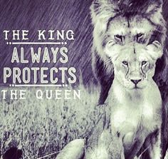 Discover and share Lion And Lioness Love Quotes. Explore our collection of motivational and famous quotes by authors you know and love. Lion Quotes, Me Quotes, Lion Memes, Wolf Quotes, Strong Quotes, Great Quotes, Inspirational Quotes, Motivational Quotes, Lion And Lioness