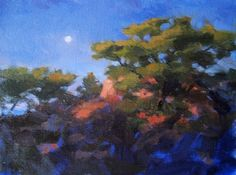 """Morning Moon, Torrey Pines by Catherine Grawin Oil ~ 11"""" x 14"""""""