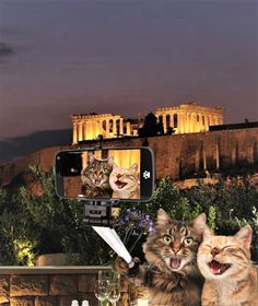 The Acropolis is one of the most popular places in Greece to snap a selfie .