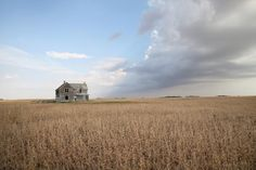Abandoned farmhouse stands in a  a soybean field near Salem, South Dakota