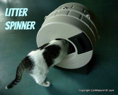 litter-spinner-cat-litter-review-giveaway