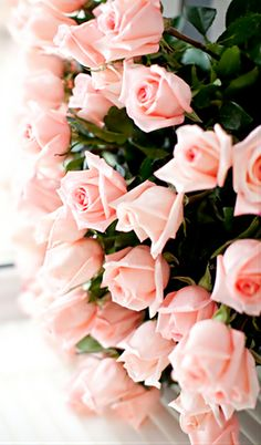 Perfectly pink roses via @Miss Simple Lesson. #pink #roses