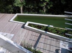 fletcher studio blend zurich biopool into an ecological oasis