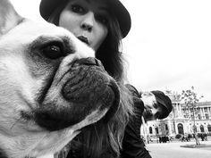 My Cute Princess Maxima Cute Princess, Boston Terrier, French Bulldog, Dogs, Animals, Animais, Animales, Animaux, Pet Dogs