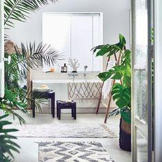 Un jardin intérieur dans la salle de bains