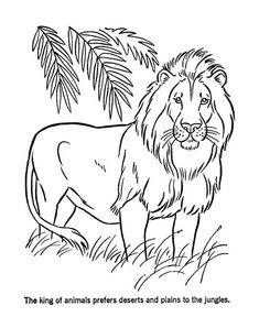 free printable mountain lion coloring pages full size of simple Pencil Drawing Tutorials, Pencil Drawings, Lion Coloring Pages, Lion Drawing, Kristina Pimenova, Magic Treehouse, Mountain Lion, Online Coloring, Eye Tutorial