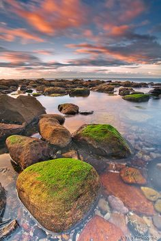 Mossy Rock Avalon Beach, Sydney's Northern Beaches, Australia
