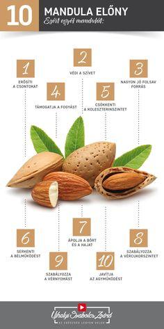 A mandula tele van E-vitaminnal, fehérjékkel, magnéziummal, rostokkal és esszenciális aminosavakkal is, de sok kalciumot, rezet, cinket, mangánt, B-vitamint, káliumot, foszfort, vasat és egészséges zsírokat is tartalmaz. Telítetlen zsírsavjai között megtalálható a palmitin-, palmitol-, sztearin-, olaj- és linolsav is. A keserűmandulából nyert mandulaolaj kitűnő bőr- és hajápoló szer, melytől bársonyosan puha és egészséges lesz bőrünk, hajunk pedig selymes és csillogó.  Az egészség legyen… Keto Recipes, Healthy Recipes, Keto Cookies, Food Hacks, Life Is Good, Herbalism, Healthy Lifestyle, Health Care, Clean Eating