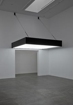 Banks Violette Not Yet Titled, 2009 Powder coated gloss black aluminum, stainless steel, galvanized cable, 324 light bulbs 18 x 120 x 120 inches (45.7 x 304.8 x 304.8 centimeters)