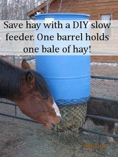 Plastic garbage can with the flip up handles to make filling hay bags. We use granite screenings in our stalls over which we put restaurant grade anti fatigue rubber mats that have holes in them. Hay Feeder For Horses, Horse Feeder, Horse Hay, Horse Love, Horse Stalls, Horse Barns, Horse Fencing, Farm Hacks, Horse Shelter