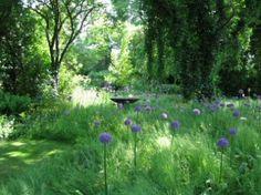 Achter Galerie Waterloo in het Noord-Hollandse dorpje Winkel ligt een prachtige wilde tuin