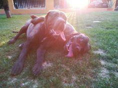 ❤ Diego + Zara = ❤  Fotograf : Macko 😘