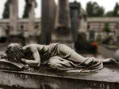 Oh my....  This photo captures the beauty and the grief.  Milan