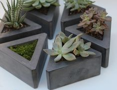 Triangle Concrete Pot set of 3 by roughfusion on Etsy, $72.00