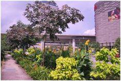 Jurong Lake District - Vision and Key Strategies View Master, Lake District, Singapore, Urban, Key, How To Plan, Plants, Unique Key, Plant