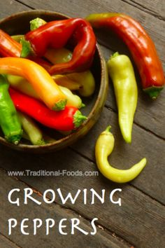Growing Peppers in Your Garden at Traditional-Foods.com