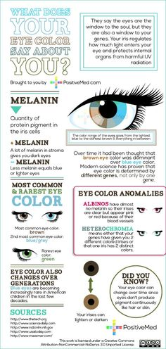 What Does Your Eye Color Say About You? They say the eyes are the window to the soul, but they are also a window to your gene. Your iris regulates how much light enters your eye and protects internal organs from harmful UV radiation. But why exactly are irises colored? Find the answer here in this interesting infographic: